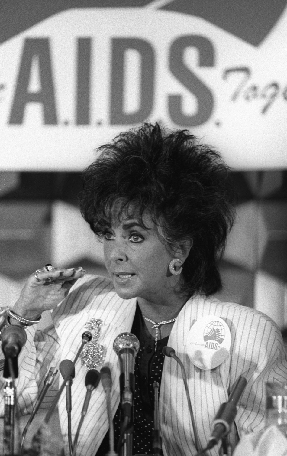 the contributions of gays and lesbians to the aids epidemic After years of hostility, the aids crisis inspired lesbians and gay men to reconcile their animosity, author lillian faderman said.