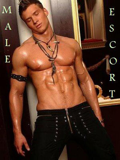hung male escort